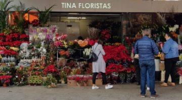 Tina Floristas Mercado